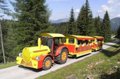 Train, ant express Russbach, children, fun, family, mountains, nature, train, summer, hiking, Dachstein West, Dachstein, Salzburg, Austria